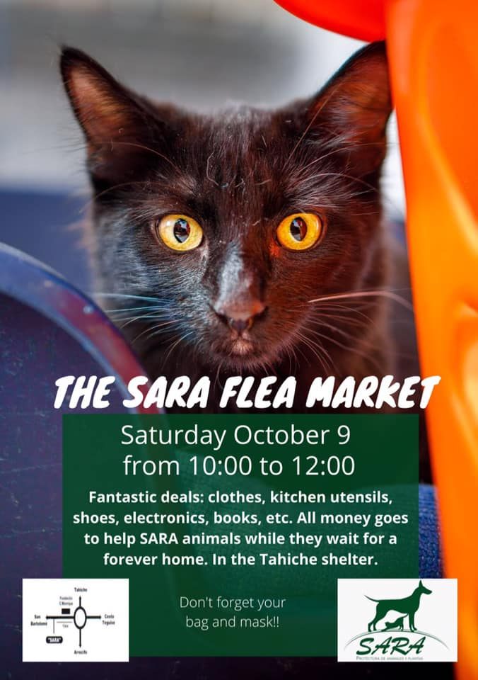 SaraFleaMarket2021October